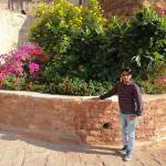 Kamlesh Barwal profile picture