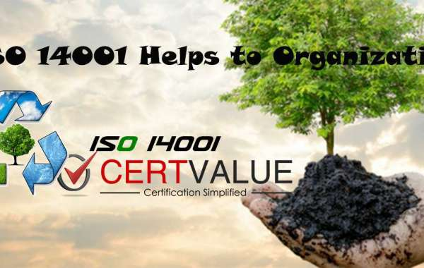 How to Allocate Roles and Responsibilities According to ISO 14001 Certification in Bangalore