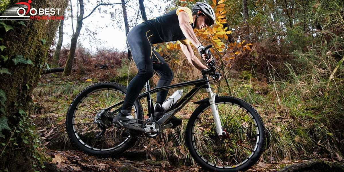 Mountain Bike Tips for Beginners: Everything You Need to Know