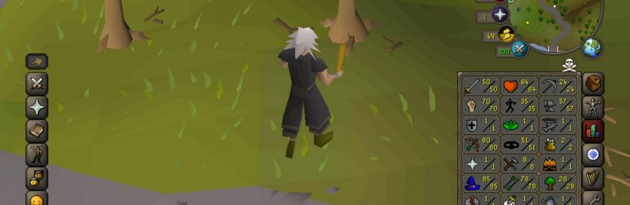 In RuneScape there is a good deal of things to do