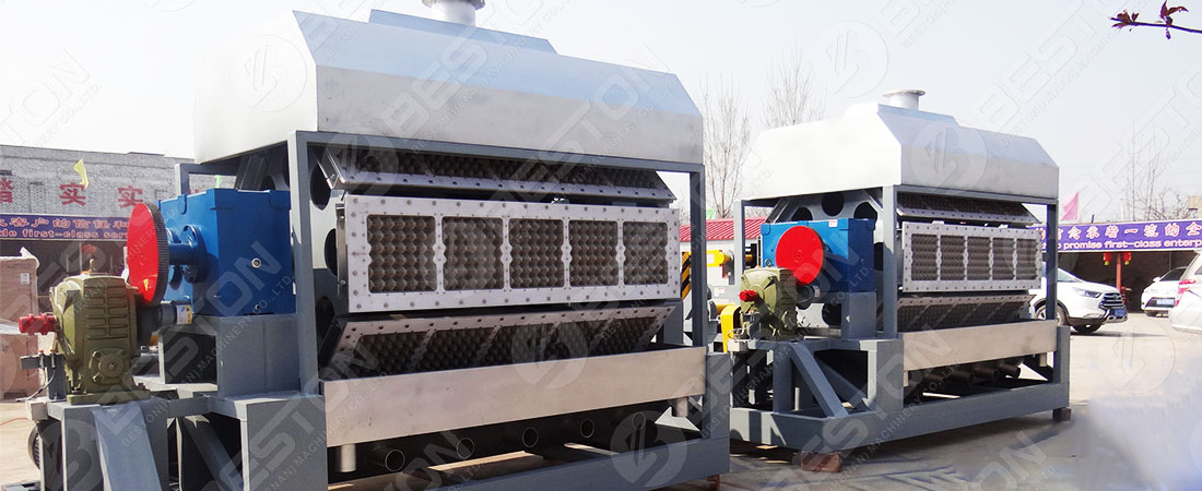 Egg Tray Machine for Sale | Competitive Price: $8,000